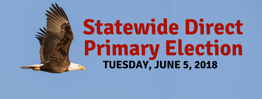 Primary Election Information