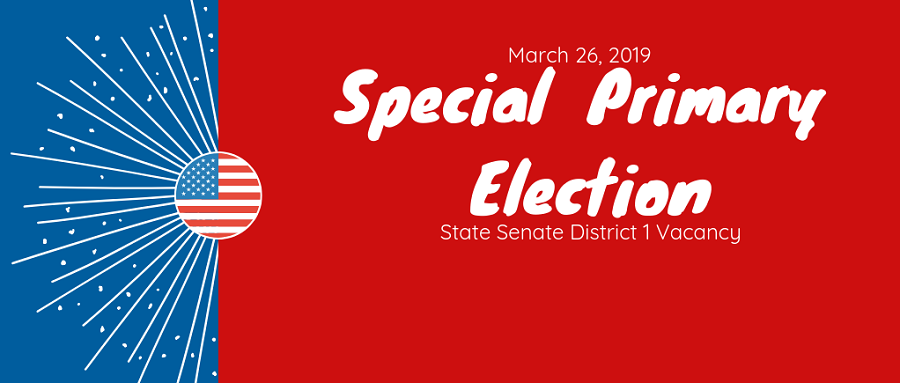 Special Primary Election March 26, 2019