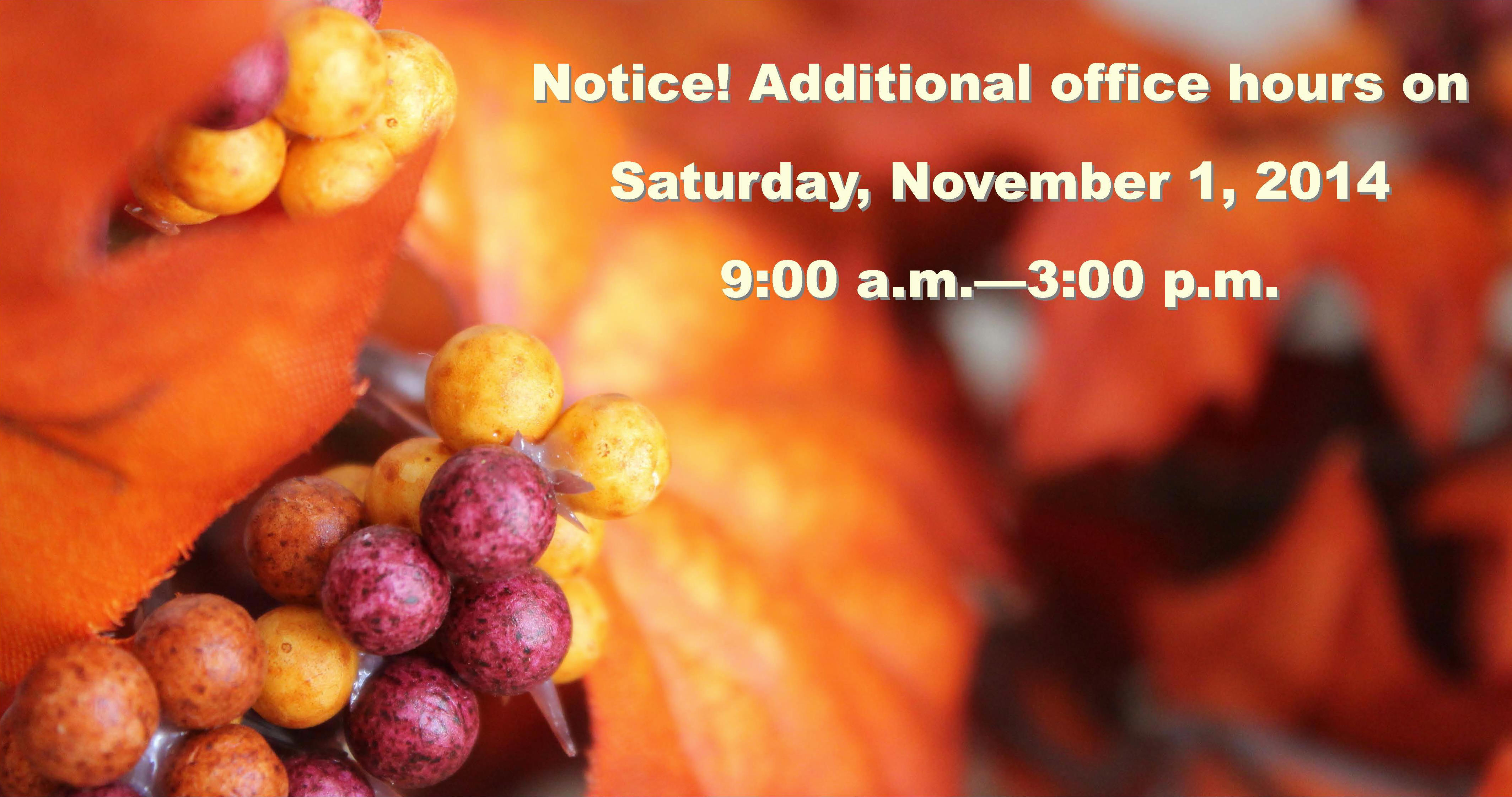 Additional Office Hours