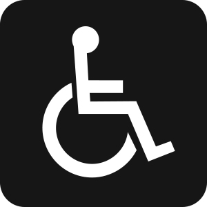 People-Disability
